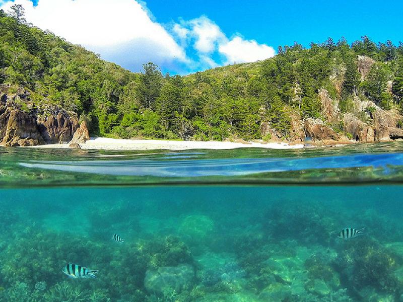 Manta Ray Bay