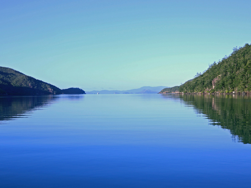 Calm water in Nara Inlet on Hook Island