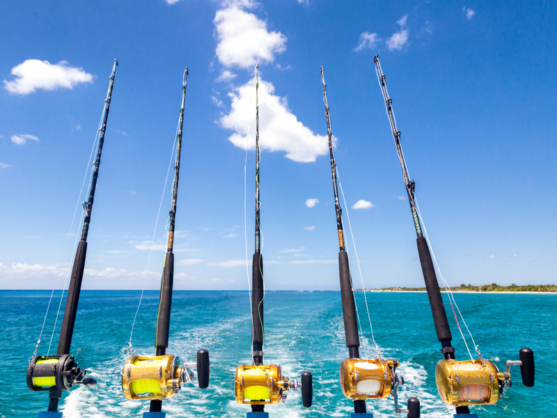 Multiple fishing rods set on the back of a motor vessel in the Whitsundays