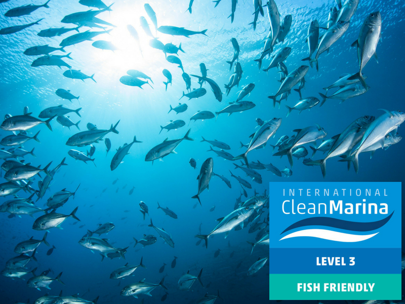 Coral Sea Marina Resort - Clean Marina Level 3