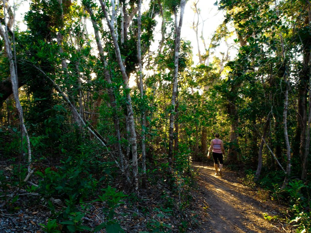 A woman walking the Honey Eater trail in the Whitsundays