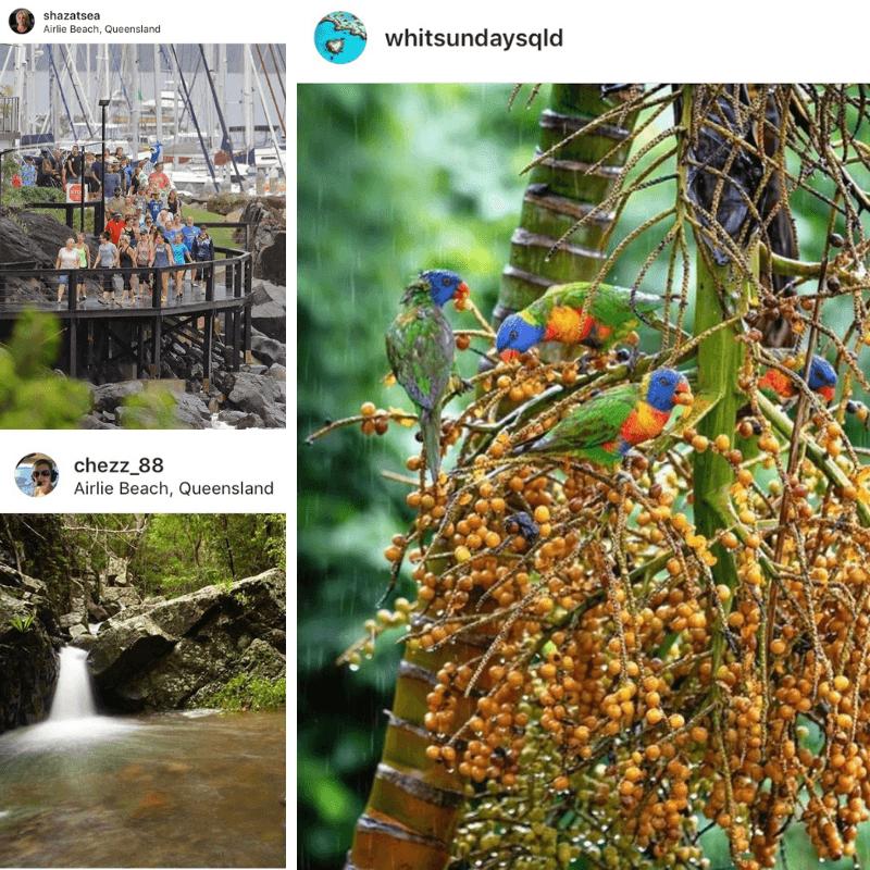 WetSunday Week Instagram