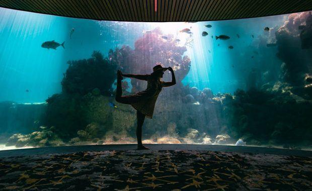 Daydream Island Living Reef Observatorium