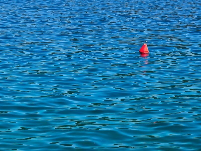 A buoy or mooring floating in the ocean