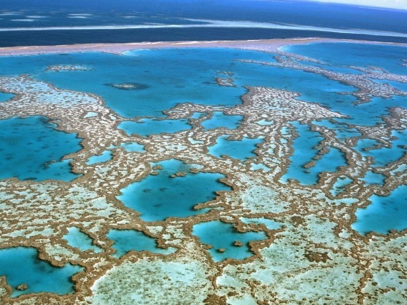 An aerial image of the Great Barrier Reef