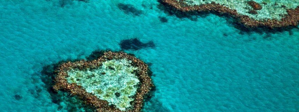 Heart Reef on the Great Barrier Reef