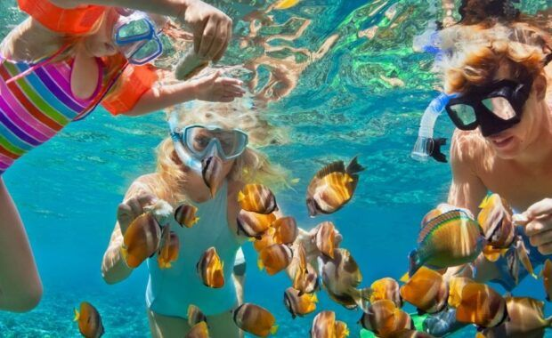 A family snorkeling with tropical fish