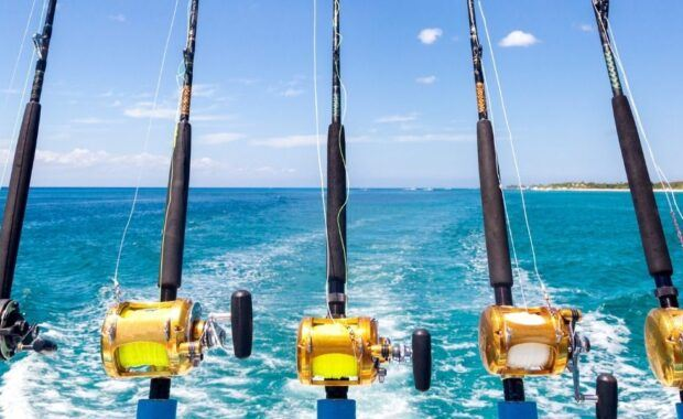 Multiple Fishing Rods on the back of a boat