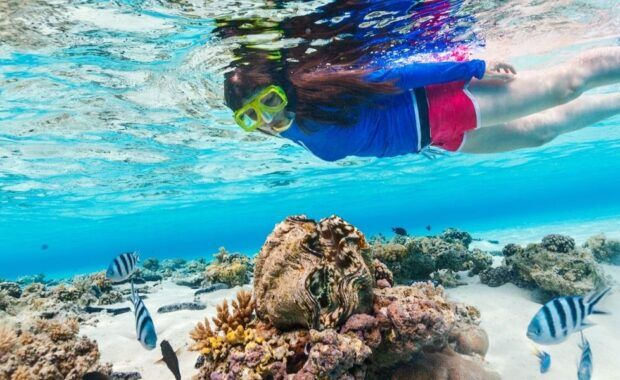 A woman snorkeling with reef and tropical fish