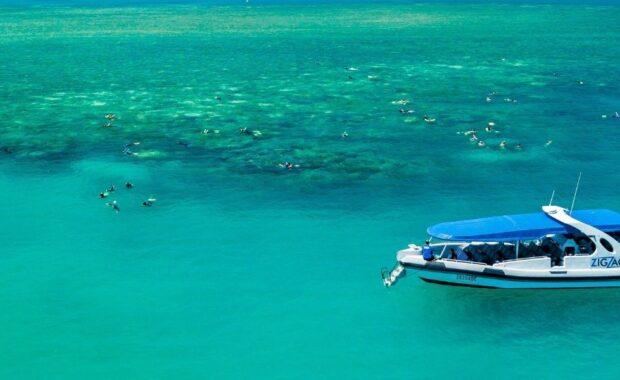 A group of travellers snorkelling on the Great Barrier Reef with speed boat vessel Zig Zag