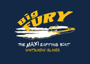 Big-FURY-logo